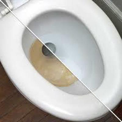 large toilet